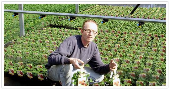 Lib 39 jardin vivaplante Jardin entretien jean paul traineau