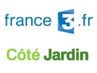logosFr3CJ
