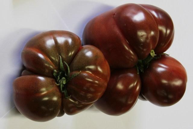 Tomate type noire de crim e vivaplante - Noir de crimee ...