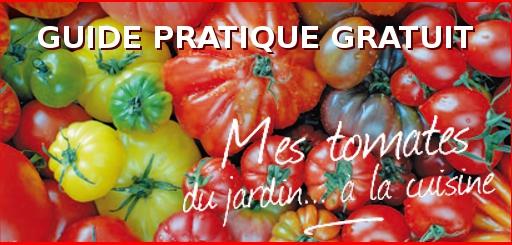 compo_Guide_Tomate_2014_04_10_VNA_Jerome
